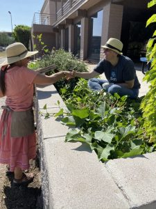 Herbalists working in the SCNM Herb Garden