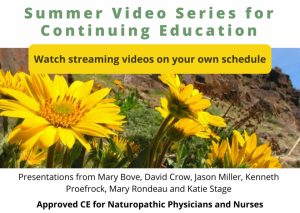 2020 Summer Video Series - Graphic for Streaming Videos