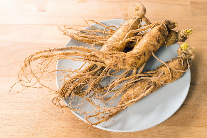ginseng for healthy aging