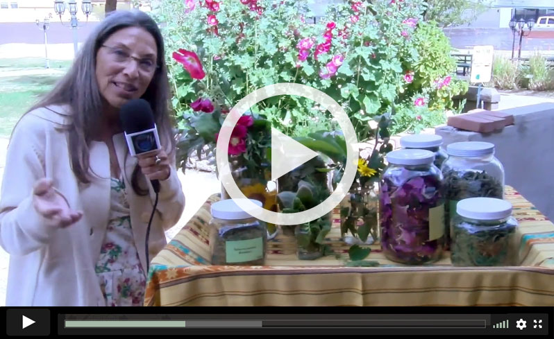 conference video of garden talk